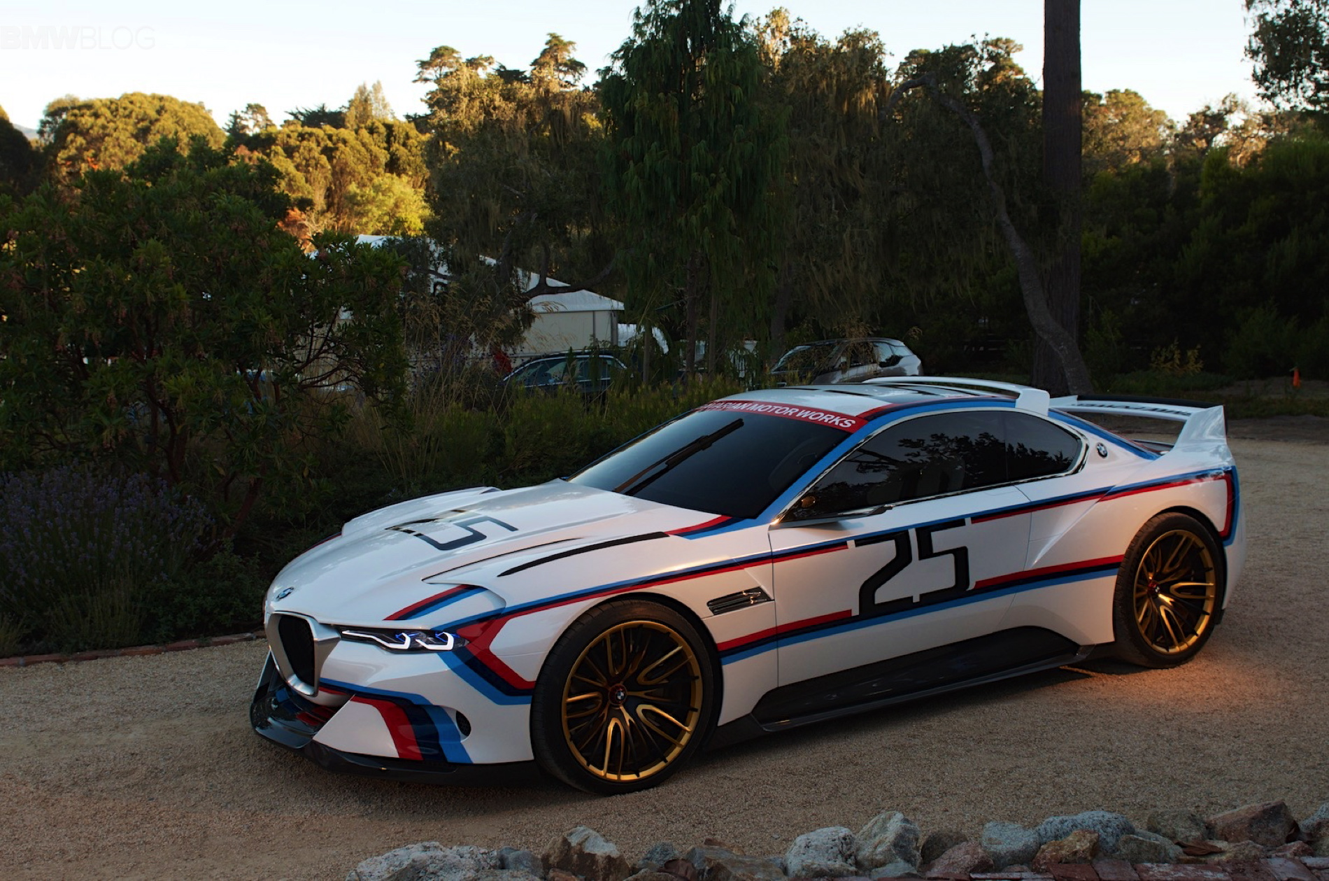 BMW 30 CSL Hommage Racing images 50