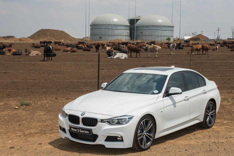 BMW plant manure 09 750x501