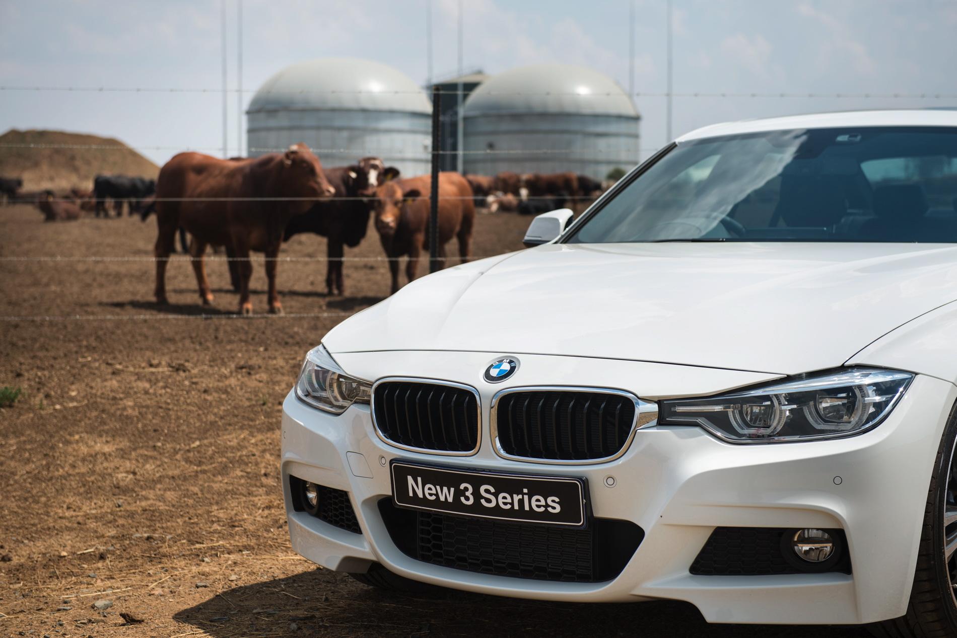 BMW plant manure 12