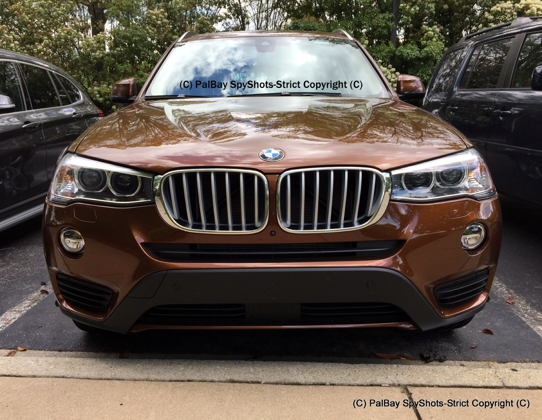 BMW F25 X3 Chestnut Bronze Metallic 12