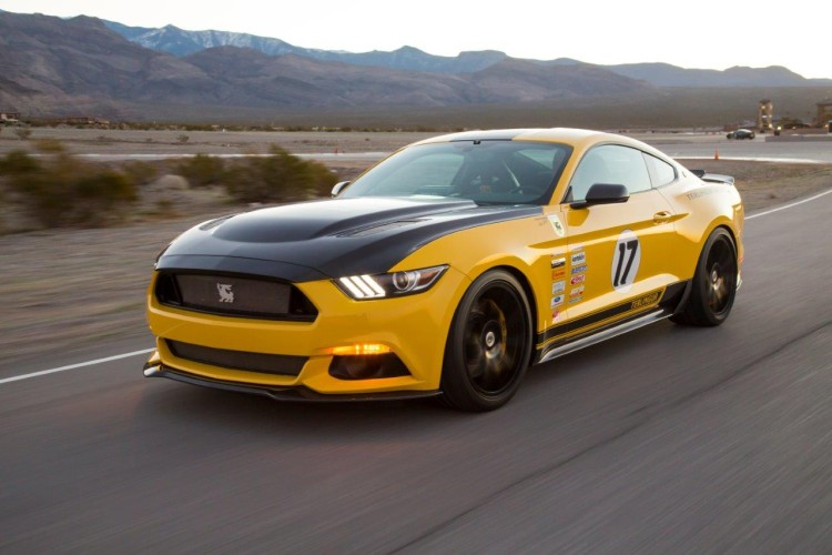 Shelby 4 750x500