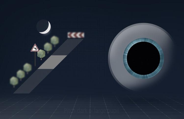 zeiss drivesafe lenses 5 750x485