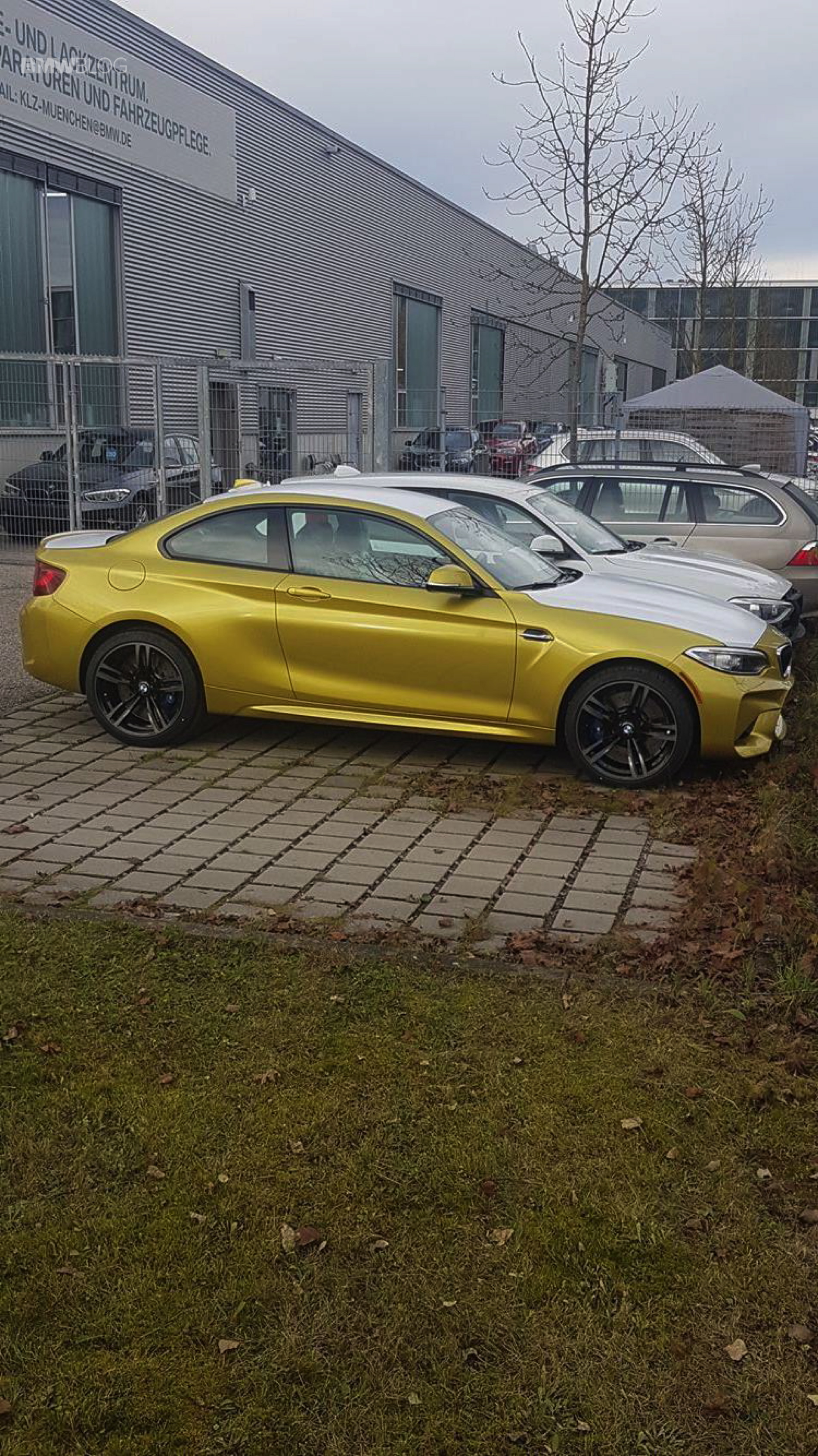 BMW M2 Austin Yellow 9