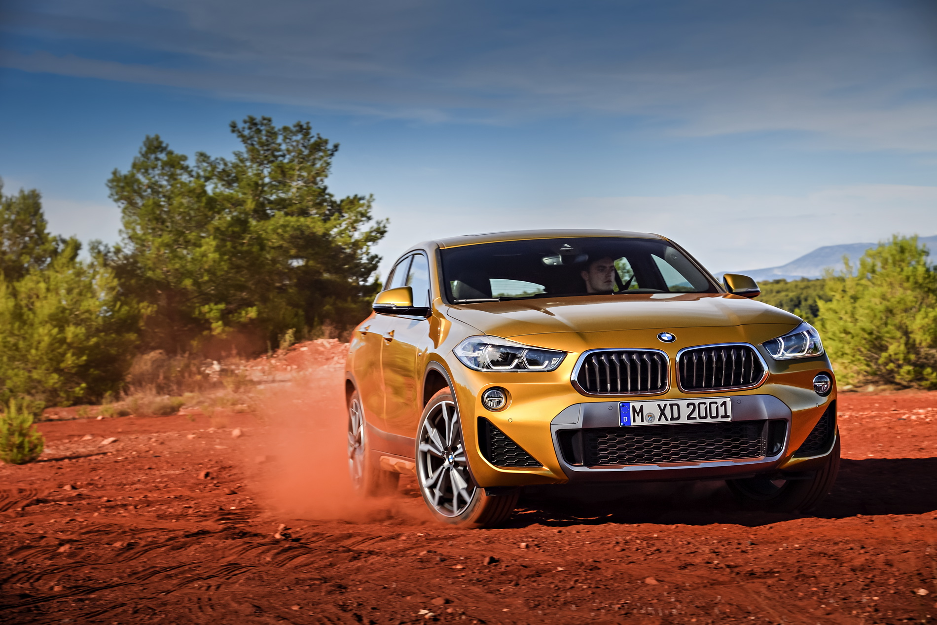 BMW X2 images 24