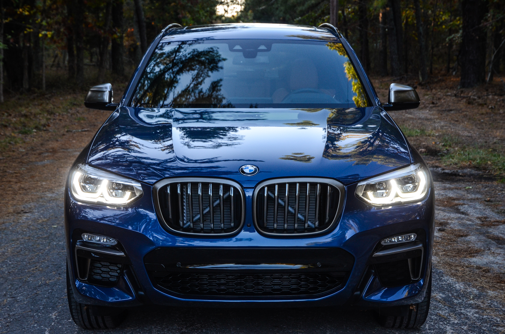 Test Drive Bmw X3 M40i A Bavarian Labrador Retriever