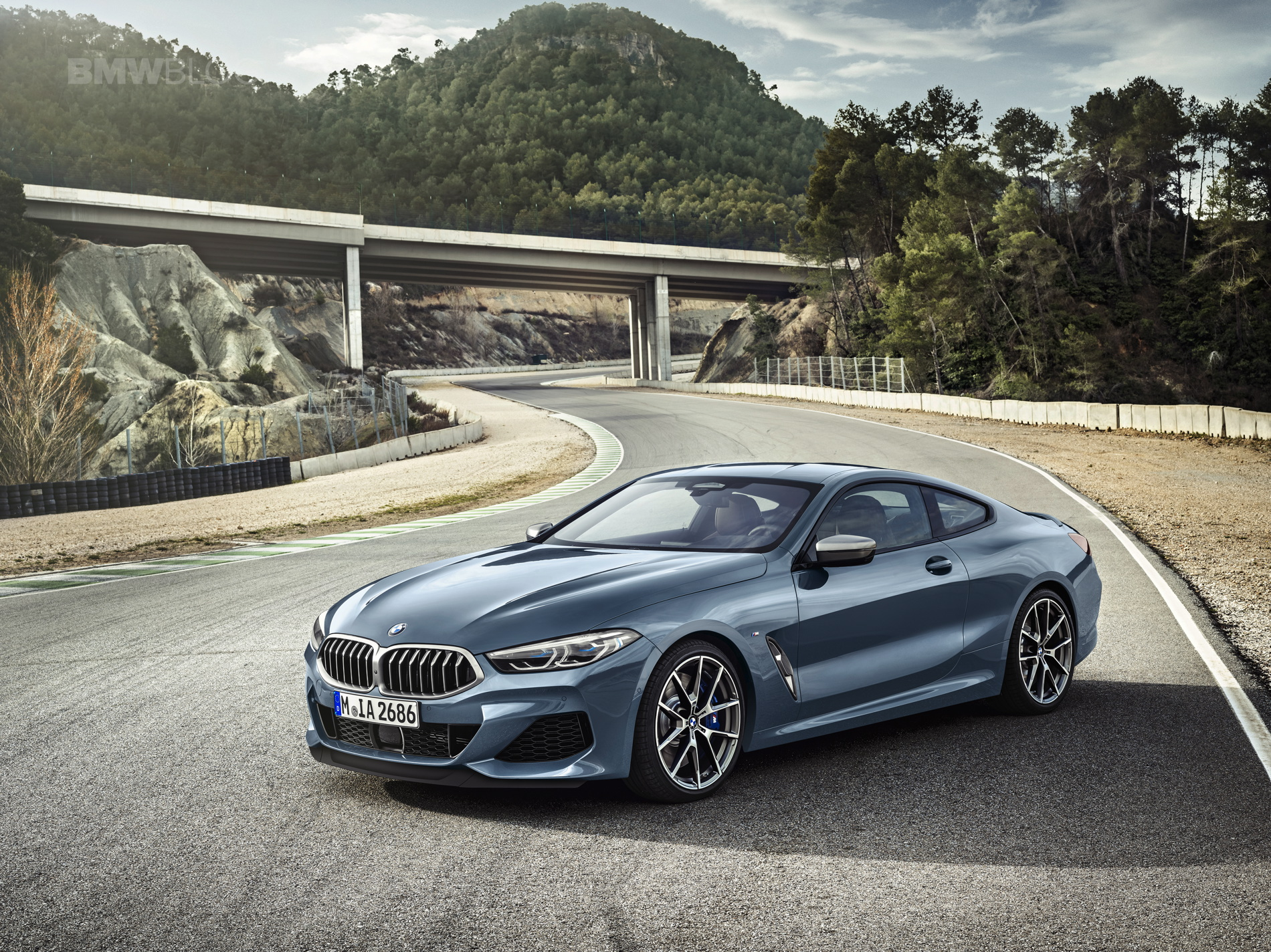 2019 BMW 8 Series Coupe 01