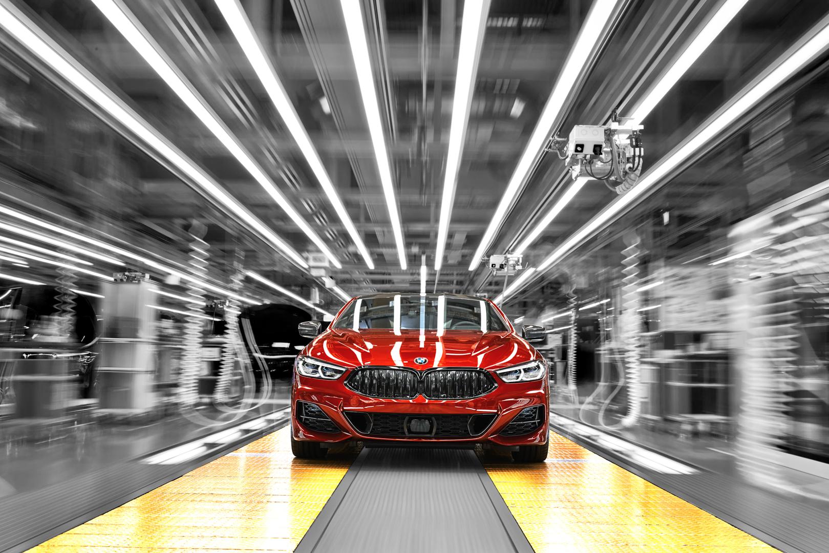 BMW 8 Series Dingofling 6