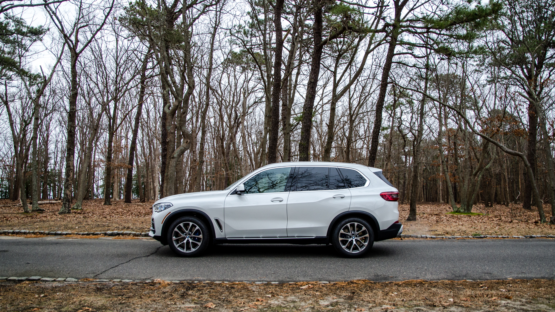 2019 BMW X5 xDrive40i 4 of 46
