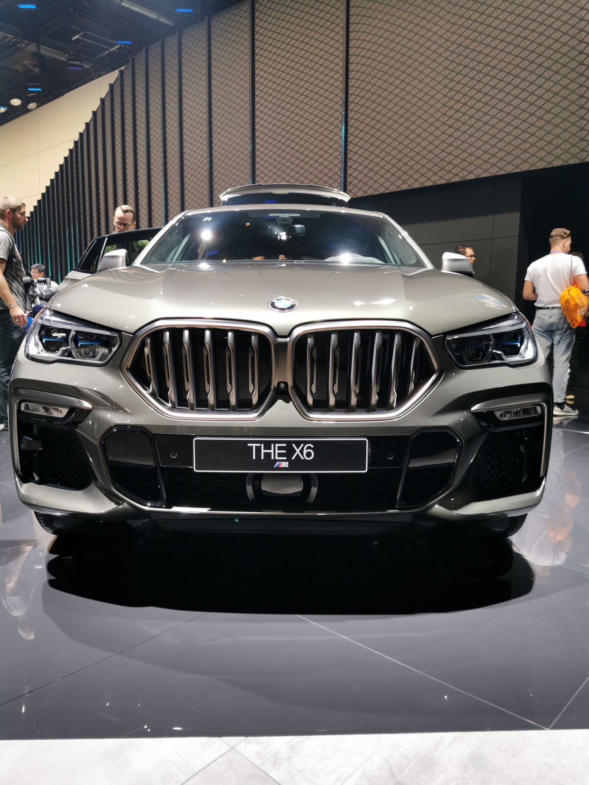 2020 BMW X6 images 3