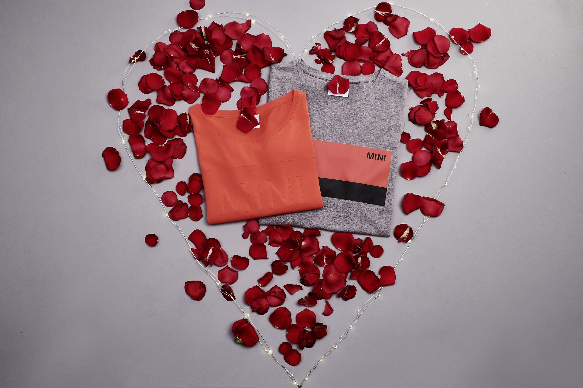 MINI Valentines Day 15
