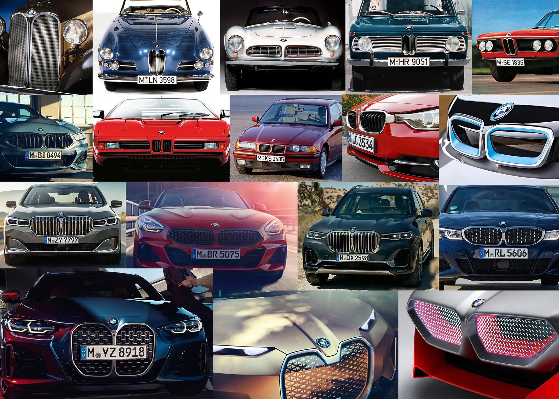 BMW Kidney Grille Evolution 00