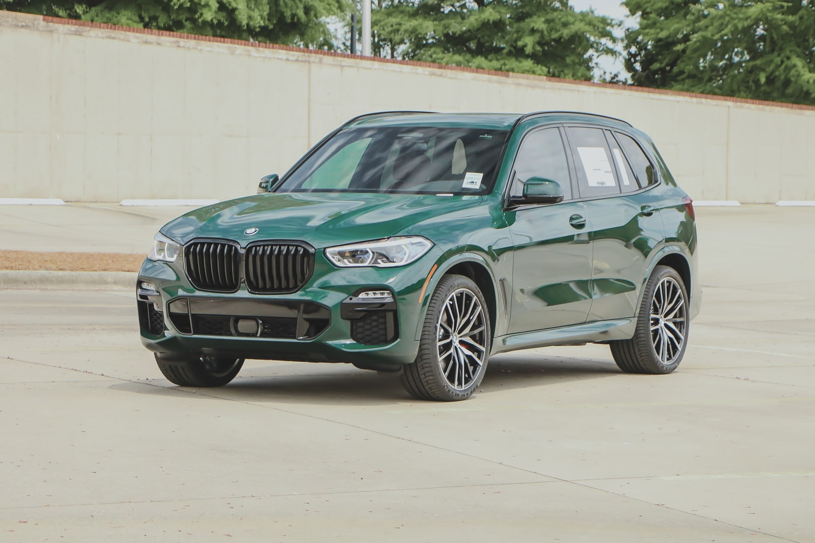 BMW X5 British Racing Green 6 of 21