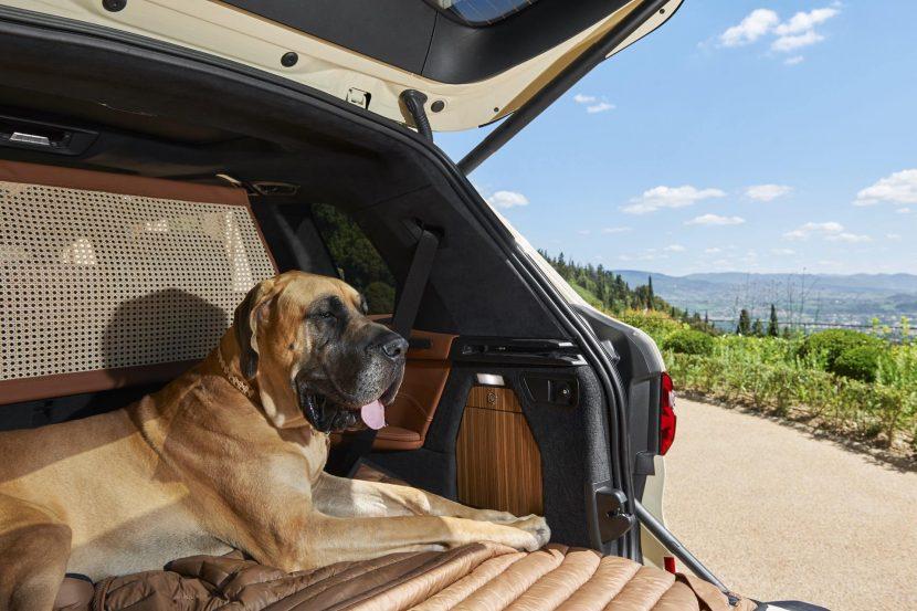 BMW X7 Poldo Dog Couture 07 830x553