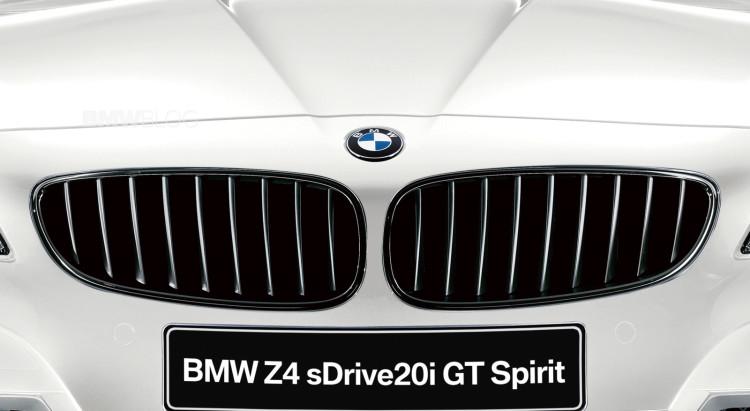 BMW Z4 sDrive20i GT Spirit-10