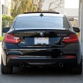 Clean Blacked Out BMW M235i Build