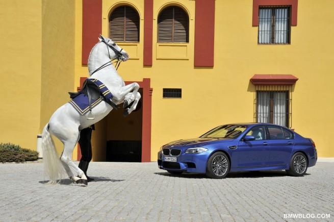 New BMW M5 photos 52 655x435