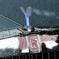 Rolls Royce villa d este 21 120x120