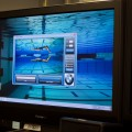 bmw swim 01 120x120