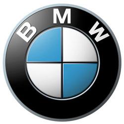 bmw logo11