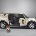 mini clubvan 20 120x120